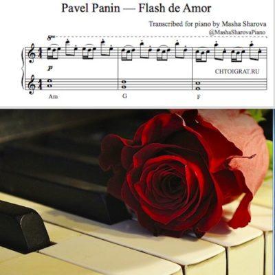 Павел Панин Flash de Amor кавер ноты